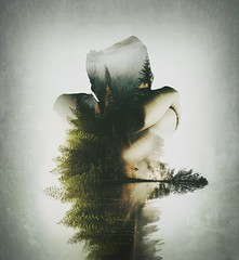 Evolution (hussameissa) Tags: trees portrait green art nature fog dark photography exposure artistic doubleexposure surrealism surreal indoor manipulation double faded illusion fantasy imagination colourful forests edit applications