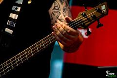 Bass (Eero Capita) Tags: brussels la concert nikon bass bruxelles brussel mediamarkt dx eero basse 2016 capita 55300 d7100 eerocapita