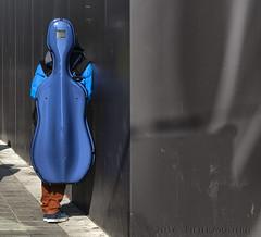 Blue Musician (Pieter Musterd) Tags: holland canon box nederland thenetherlands denhaag cello canon5d nl paysbas thehague niederlande musicinstrument zuidholland doos musterd pietermusterd sgravenhage canon5dmarkii haagspraak pmusterdziggonl muzikantmusician