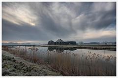 Sunset Waterakkers_001 (cees van gastel) Tags: nature water skyline clouds landscape frozen skies bevroren outdoor horizon natuur wolken breda riet landschap luchten sigma1020mm rijp einder ceesvangastel canoneos40d waterdonken waterakkers