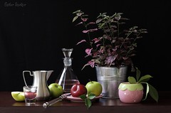 Pink Accents (Esther Spektor - Thanks for 10+ millions views..) Tags: pink stilllife food brown plant black reflection green apple glass metal fruit composition canon silver bucket spring ceramics pattern wine availablelight knife plum stilleben pot slice pitcher accents tabletop decanter bodegon naturemorte naturamorta naturezamorta creativephotography leafplate estherspektor atirsticphoto