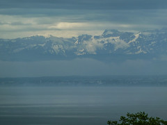 Dominating Alps (Igor Sorokin) Tags: travel blue lake snow mountains alps clouds germany landscape switzerland haze europe caps scenic ps panasonic pointandshoot bodensee constance dmc pointnshoot