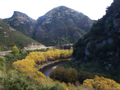 Taieri Gorge in Autumn Gold (geoffreyw@kinect.co.nz) Tags: autumn gold gorge taieri