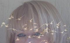 io sono come loro ... (miriam ulivi) Tags: seagulls face picasa gabbiani viso nikond3200 miriamulivi