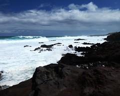 DSC_5265 e5 (J Telljohann) Tags: hawaii maui hookipa