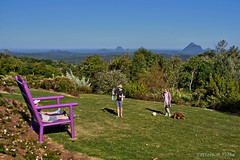 Huge bench for the great view (Tatters ) Tags: people garden bench australia lookout queensland huge glasshousemountains maleny purpe oloneo