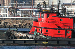 PATRICIA S in New York, USA. January, 2016 (Tom Turner - SeaTeamImages / AirTeamImages) Tags: nyc red usa newyork water crimson port scarlet harbor marine unitedstates harbour transport vessel spot pony maritime transportation tugboat tug statenisland bigapple channel spotting waterway patricias kvk tomturner killvankull