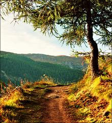 Alpine path (Katarina 2353) Tags: autumn alps film landscape switzerland nikon zermatt katarinastefanovic katarina2353