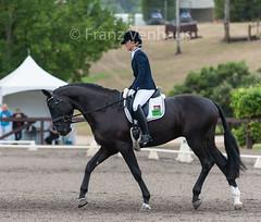 160407_2016_SydneyCDI_3738.jpg (FranzVenhaus) Tags: horses test sydney australia nsw judge newsouthwales aus equestrian riders dressage siec