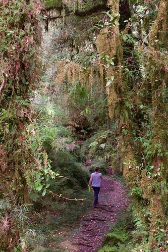 chile-patagonia-carretera-austral - 71