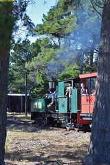 DS_Train_3_McLeansIsland_09April2016 (nzsteam) Tags: price train island traction engine railway scene steam engines locomotive boiler boilers mcleans sawmilling
