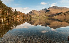 Wast water photobomb (Graham - bell) Tags: trees water reflections labrador fells scafell pike kiba wast wasdale lingmell