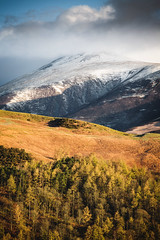 Skiddaw (Dave Fieldhouse Photography) Tags: morning light mountain snow clouds forest landscape nationalpark spring sheep lakes lakedistrict pines cumbria fells keswick skiddaw latrigg