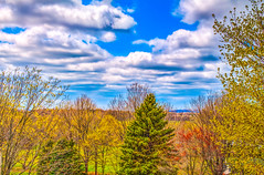 Clouds Abound (nplummer10) Tags: blue trees sky cloud color tree green beautiful clouds america canon landscape colorful michigan tripod sharp neighborhood clear american hd hdr t5i