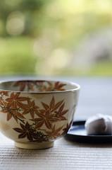 Enjoying a Cup of Maccha in Autumn (PV9007 Photography) Tags: green japan japanese kyoto tea   ohara   kioto jpn maccha      oohara   jikkoin jikkouin