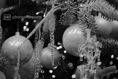 b/w challenge 357 / 365 (photos4dreams) Tags: christmas pink bw white black glass monochrome photos balls sw schwarz glas baubles kugeln weis christbaumkugeln photos4dreams photos4dreamz p4d paperchristmasworld2015p4d