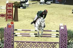GO4G3392_R.Varadi_R.Varadi (Robi33) Tags: switzerland referee jumping scuba testing elite trophy exercises spectator horseriding worldclass horsewoman horseequestrian csibasel