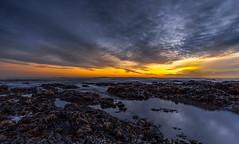 Seawed Sunrise (Steven Peachey) Tags: uk morning light sea england sky seascape seaweed clouds sunrise canon coast rocks exposure waves wideangle hartlepool northeastcoast ef1740mmf4l lee09gnd leefilters canon6d lee06gnd hawkdog