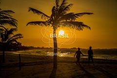 NE_DeltaParnaiba0428 (Visit Brasil) Tags: pordosol sol praia horizontal brasil natureza céu turismo árvore lazer nordeste ecoturismo vegetação piauí externa silhuetas luiscorrea comgente diurna praiadoscoqueiros brasil|nordeste brasil|nordeste|piauí|luiscorrea brasil|nordeste|piauí|luiscorrea|praiadoscoqueiros quisoquecabana brasil|nordeste|piauí
