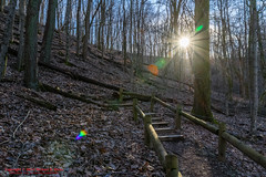 Radnor Lake State Natural Area - February 18, 2016 (mikerhicks) Tags: winter usa nature geotagged outdoors photography unitedstates hiking tennessee brentwood hdr tennesseestateparks geo:country=unitedstates camera:make=canon exif:make=canon geo:city=brentwood geo:state=tennessee exif:focallength=18mm radnorlakestatenaturalarea oakhillestates exif:aperture=10 exif:lens=18250mm sigma18250mmf3563dcmacrooshsm exif:isospeed=500 canoneos7dmkii camera:model=canoneos7dmarkii exif:model=canoneos7dmarkii geo:location=oakhillestates geo:lon=86804166666667 geo:lat=36056388333333 geo:lat=3605625333 geo:lon=8680405667 southcovetrail