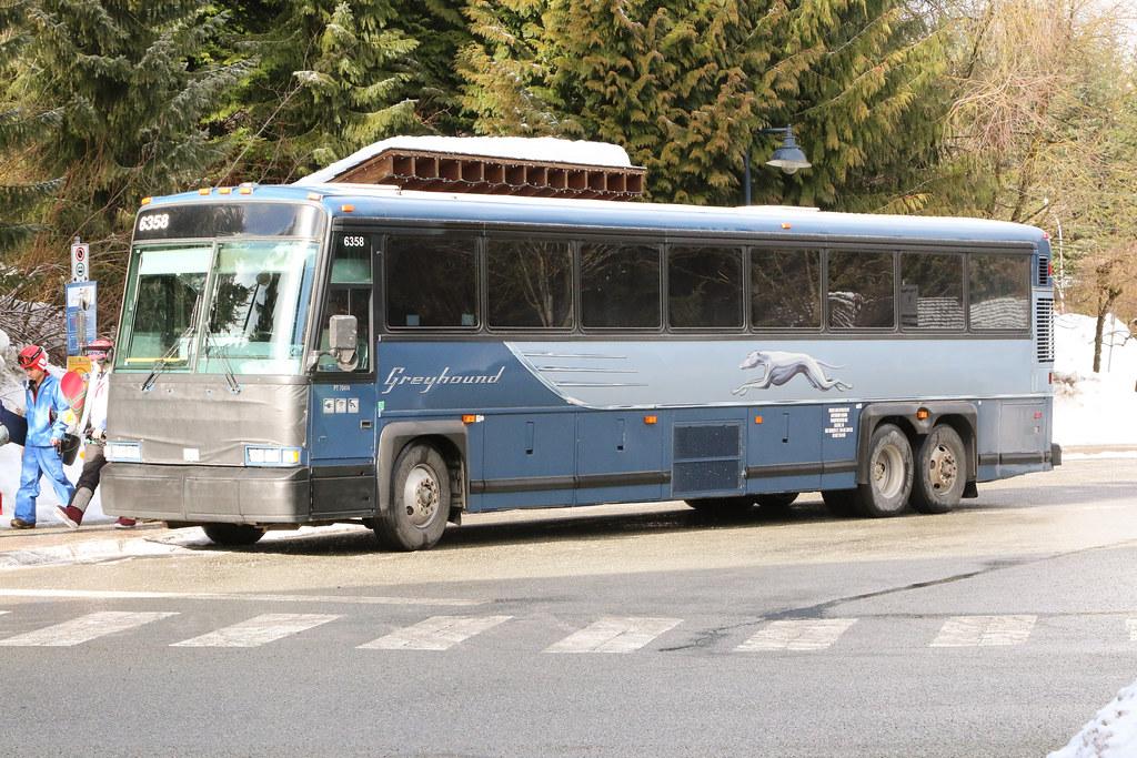 Greyhound 6358