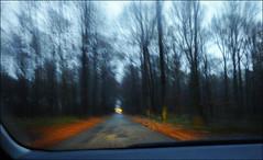 Thriller (chando*) Tags: road trees car twilight woods belgique headlights voiture route arbres motionblur tervuren crpuscule vlaanderen phares fortdesoignes