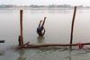 Gandak river - Sonepur, India (Maciej Dakowicz) Tags: india water rural river jump moment mela bihar sonepur gandak sonpur