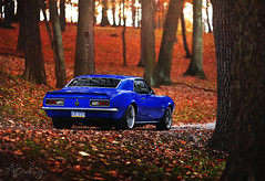 (Andrew Barshinger Photography) Tags: fall chevrolet nature colors canon outdoors woods outdoor pennsylvania ss camaro pa chevy v8 musclecar 135l