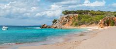 Baie blanche, plage magnifique de l'Ile Tintamarre, Saint Martin (steph3xx) Tags: white beach saint bay martin turtle sable sint carribean blanche blanc maarten tortue baie caraibes tintamarre