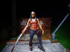Michonne (ridureyu1) Tags: toy toys actionfigure zombies walkers mcfarlane mcfarlanetoys toyphotography twd thewalkingdead sonycybershotsonycybershotdscw690 wolvesnotfar