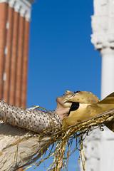 Carnevale di Venezia 2016 (Claude Schildknecht) Tags: venice italy costume mask carnaval venise venezia venedig masque carnevaledivenezia2016 verbeceltecompagnie