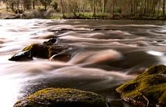 DSC_0005m (xmenifield) Tags: west water rock night oregon creek river moss stream eugene willamette mose