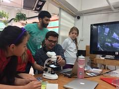 Plankton and Bioreactor research (cesarharada.com) Tags: school hk fish net market harbour hong kong ley algae yun ths mun plankton makerbay