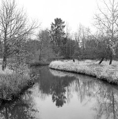 Superpan200_Meerhout-8 (Jensdh) Tags: film:iso=200 ilfordilfotecddx rolleisuperpan200 developer:brand=ilford developer:name=ilfordilfotecddx film:brand=rollei film:name=rolleisuperpan200 filmdev:recipe=10677