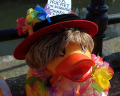 Dressed up ducks for the Ramsbottom Ruck Race 2016 - 7 (Tony Worrall Foto) Tags: county uk england game silly race fun duck costume cool stream tour open place northwest display unitedkingdom many painted country north group ducks competition visit location lancashire plastic area sunlit northern update daft duckrace attraction lancs ramsbottom coolducks welovethenorth