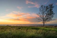 Lee Point sunset (SamCreek) Tags: sunset sea seascape beach landscape sony darwin tropical a7 1635 carlzeiss a7ii wetseason leepoint cloudsstormssunsetssunrises