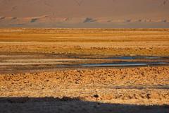 Desert Tones (Alison Claire~) Tags: chile travel lake travelling nature yellow america canon de landscape outdoors eos san desert outdoor south salt pedro atacama traveling canoneos salar 600d canoneos600d
