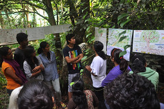 Students explain their posters (mansi-shah) Tags: rainforest farming coorg madikeri forestecology mansishah rainforestretreat jenniferpierce ceptsummerschool