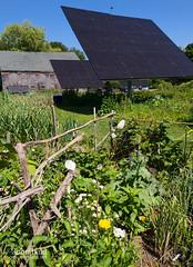 Solar Panels at Maine Audubon, Falmouth, Maine (67083) (John Bald) Tags: summer solar maine solarpanel bluesky falmouth communitygarden audubon maineaudubon gislandfarm gislandfarmauduboncenter