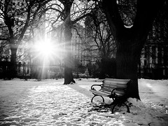 (W.....) Tags: street city winter urban toronto wilsonhophotography