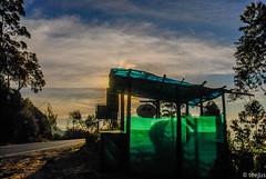 Open for b u s i n e s s ! (t.e.e.j.u.s) Tags: india sunrise dawn asia kerala teagarden munnar