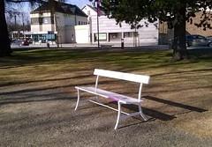 Bookcrossing releases (zimort) Tags: bok book bookcrossing benk bench park wildrelease villslipp skatepark gjvik norge norway norwegen