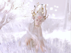 Last Winter Breath (BetaTested (Ealeen Debbel)) Tags: winter snow fairytale truth skin avatar fair elfe sl fairy fantasy secondlife aisling appearance fee elven maitreya ventur peqe catwa