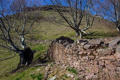 ItsusikoHarria-32 (enekobidegain) Tags: mountains montagne monte euskalherria basquecountry pyrnes pirineos mendia paysbasque nafarroa pirineoak bidarrai itsasu itsusikoharria
