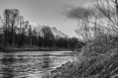 Bergfrhling... (landeinwohner) Tags: bw monochrome landscape blackwhite monochrom engadin schwarzweis tag182 365fotosorg