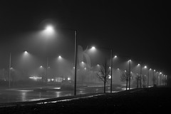 Street Lamps in the Fog (Kate_Leigh5) Tags: road street city light urban blackandwhite lamp misty fog night dark haze streetlight glow streetlamp many empty foggy nobody row line nighttime late glowing hazy distance magical lining