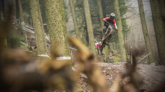 PHUN8542 (phunkt.com™) Tags: race forest downhill dh series british ae 2016 bds phunkt phunktcom keithvalentine