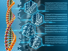 DNA background 2 (Muscle Fuel) Tags: life blue abstract technology gene background cell evolution science double chain health research human sphere chemistry stuff dna medicine helix concept clone biology microscope genetics multicolor atoms molecule analysis chromosome phosphate threedimensional russianfederation genome adenine cytosine thymine guanine