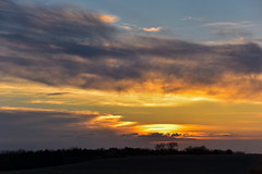 Almost Setting Sun (thefisch1) Tags: sunset sky cloud tree silhouette interesting nikon colorful open calendar wind outdoor horizon pasture vista kansas nikkor majestic treeline oogle sunsest paraire