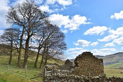 Ruins of a Time Gone By (daviddaniels989) Tags: sky tree field wall derbyshire ruin edale buildong